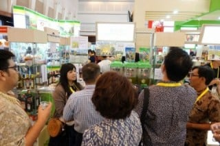 Many visitors are interested in our tea.